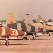 F-5 Aggressors on the South end of the flightline.